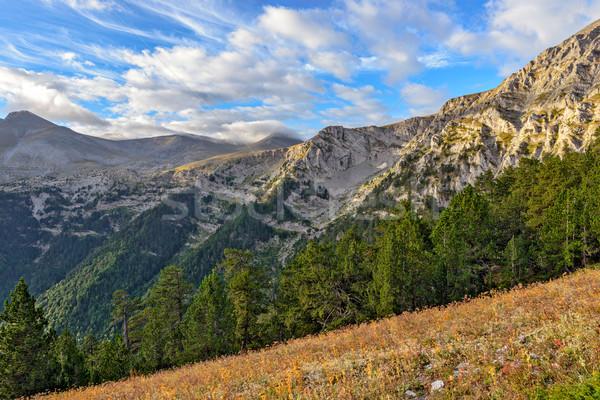 Paisaje parque alrededor forestales naturaleza montana Foto stock © mahout