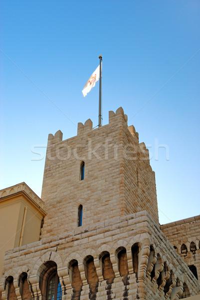 Princely palace of Monaco Stock photo © mahout