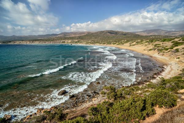 Costa península Chipre parque paisagem mar Foto stock © mahout