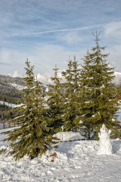 Snowman and spruces in mountains Stock photo © mahout
