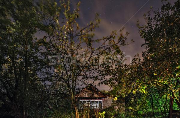 Pequeno cabana floresta noite estrelas céu Foto stock © mahout