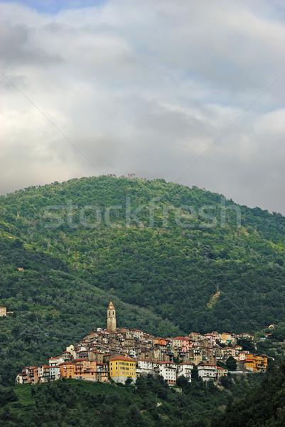 Kleine stad Italië panoramisch boom muur Stockfoto © mahout