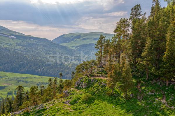 горные пейзаж лет лес пород дерево Сток-фото © mahout