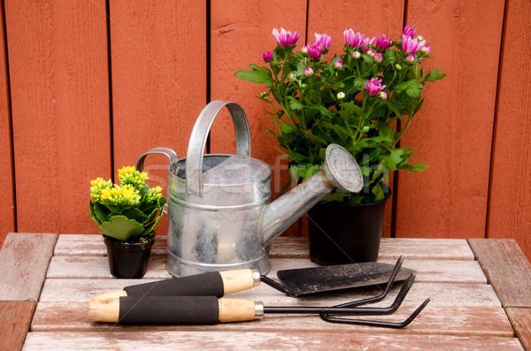 園芸用具 木製 草 作業 自然 背景 ストックフォト © maisicon