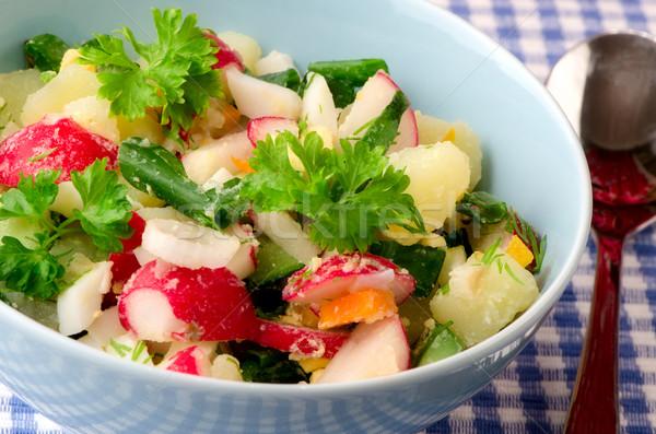 Salata taze sebze yaz gıda doğa mutfak Stok fotoğraf © maisicon