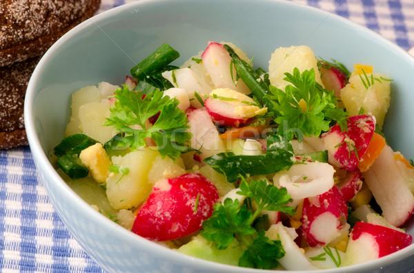 Салат свежие овощи лет продовольствие природы кухне Сток-фото © maisicon