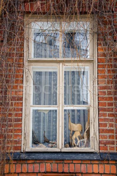 Eski pencere kale çiçek Bina duvar Stok fotoğraf © maisicon