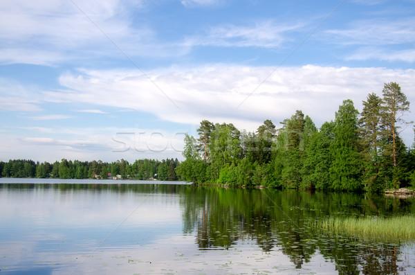 Lake shore. Stock photo © maisicon
