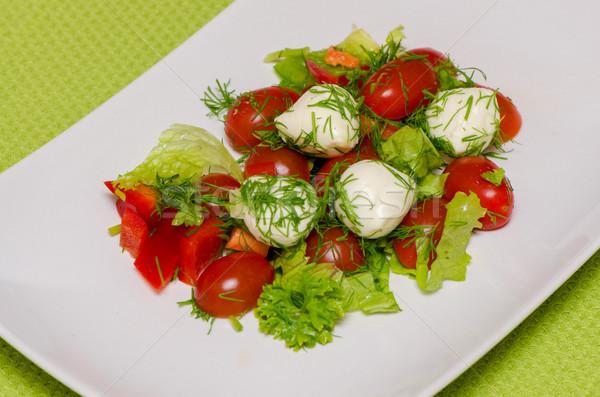 Sebze salata mozzarella peynir beyaz plaka Stok fotoğraf © maisicon