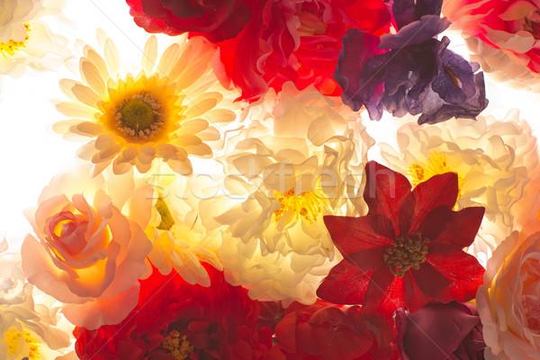 Kleurrijk bloemen bloemblaadjes tuin achtergrond Stockfoto © majdansky
