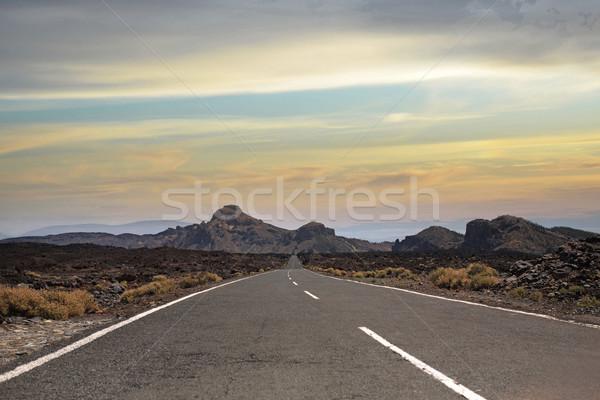 Vue longtemps route désert magnifique été Photo stock © majdansky