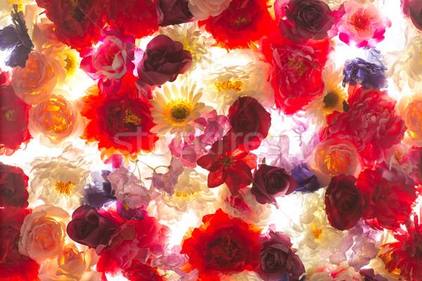 Foto bos kleurrijk bloemen planten tuin Stockfoto © majdansky