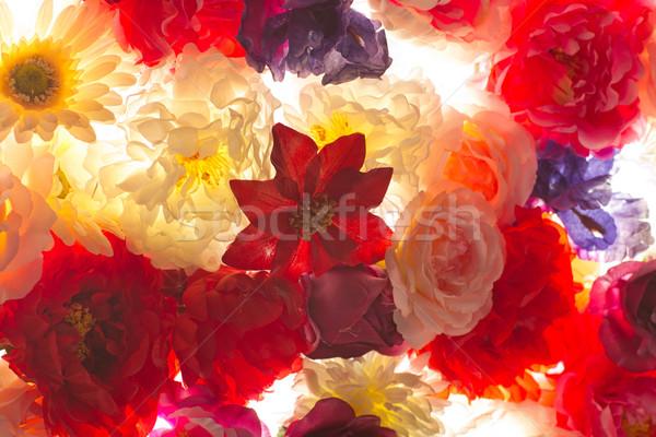Nice coup fleurs fleurs d'été jardin Photo stock © majdansky