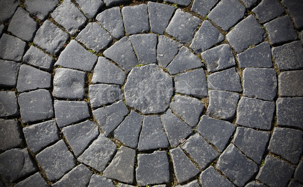 Paving stone on the road Stock photo © maknt