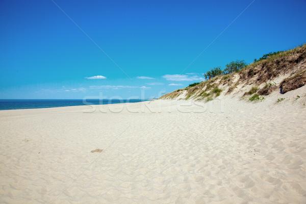Oostzee kust foto wal strand hemel Stockfoto © maknt