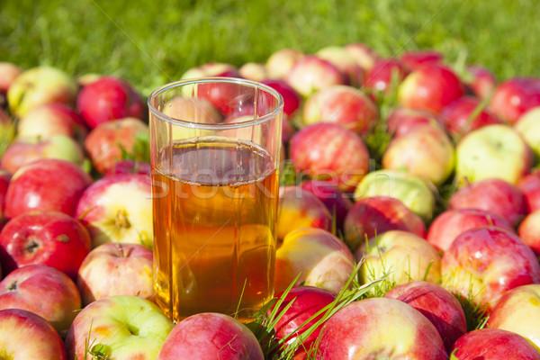 Appels glas sap foto's groep boerderij Stockfoto © maknt