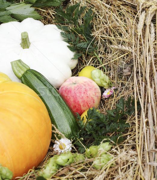 Autumn goodies Stock photo © Makse