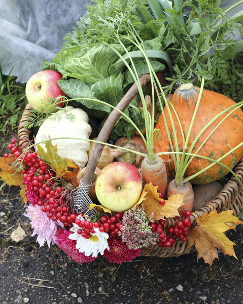 Basket with vegetables and fruits Stock photo © Makse