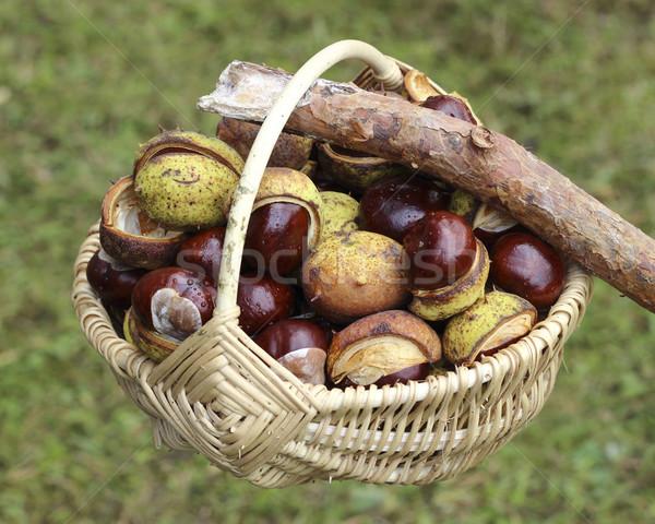 Chestnuts  in wicker basket Stock photo © Makse