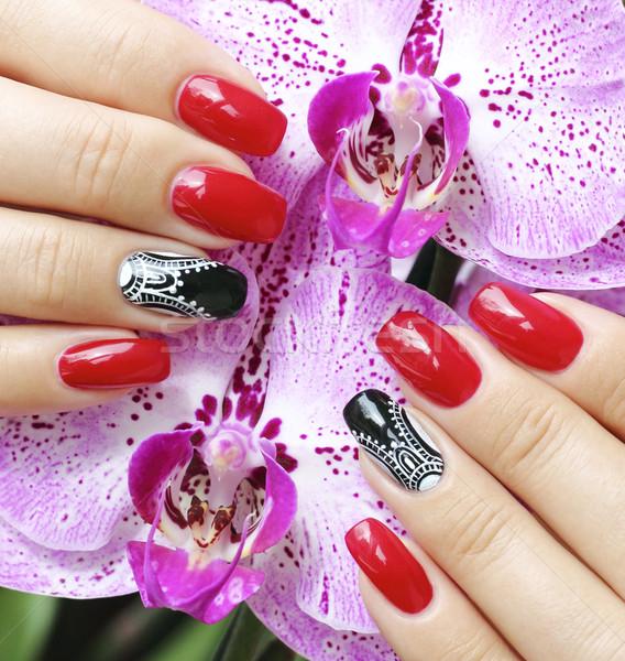 Fingernägel Orchidee Blumen Blume Hand Mode Stock foto © Makse