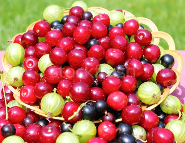 Ripe berries Stock photo © Makse