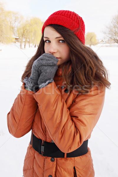 Handen vrouw koud buitenshuis winter gezicht Stockfoto © mallivan