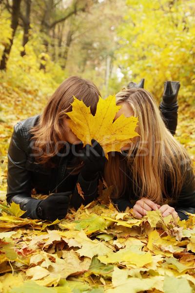 Twee vrienden huid gezicht vrouwen Stockfoto © mallivan