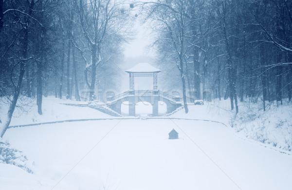 Chinese brug park Oekraïne water hout Stockfoto © mallivan