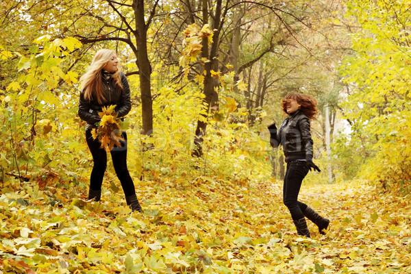 друзей листьев два другой женщины Сток-фото © mallivan