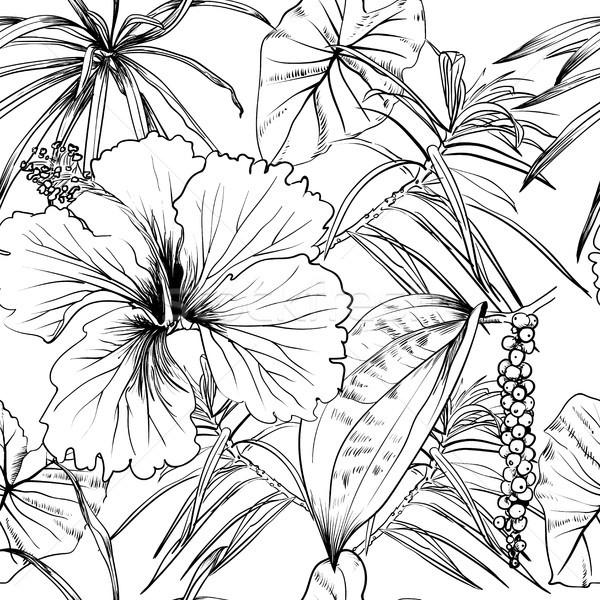 Tropicali esotiche fiori foglie libro da colorare Foto d'archivio © Mamziolzi