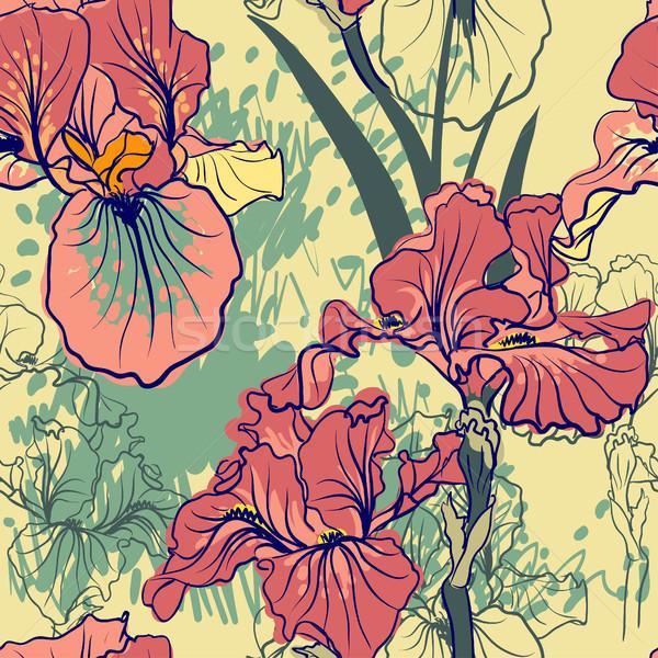 Photo stock: Décoratif · iris · fleur · rétro · couleurs