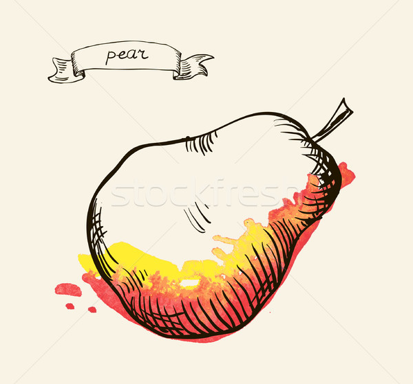 hand drawn vintage illustration of pear Stock photo © Mamziolzi