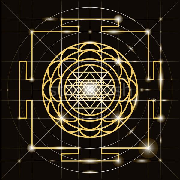 Heilig geometrie kosmisch energie bloem lichaam Stockfoto © Mamziolzi