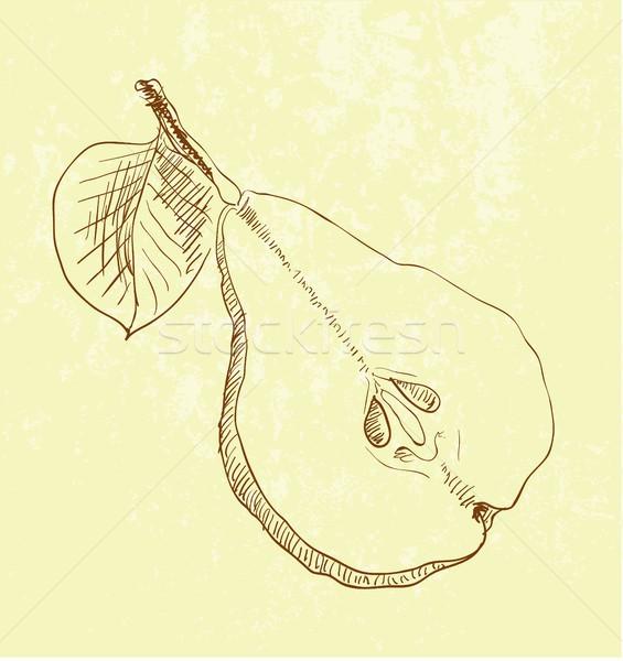 梨 水果 復古 插圖 手工繪製 樹 商業照片 © Mamziolzi