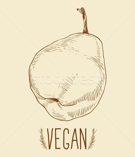 Pear fruit - vintage illustration Stock photo © Mamziolzi