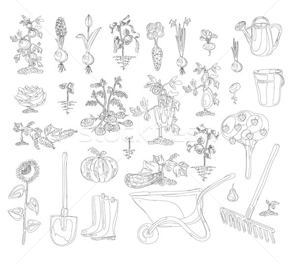 vector gardening set coloring book Stock photo © Mamziolzi