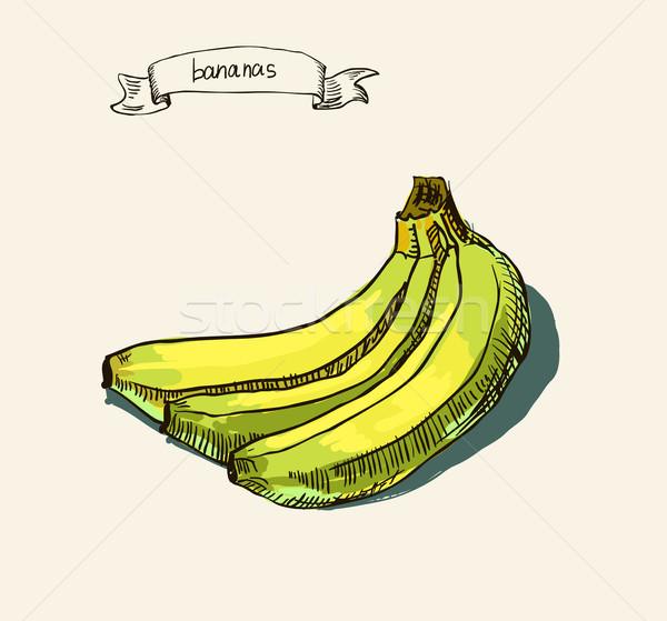hand drawn vintage illustration of banana Stock photo © Mamziolzi