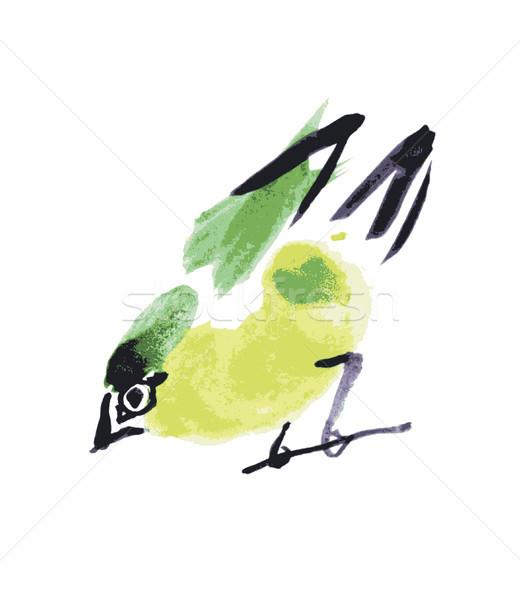 watercolor drawing bird, robin at white background Stock photo © Mamziolzi