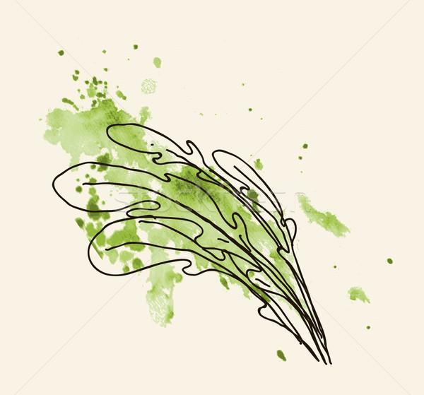 Rucola leaves. Stock photo © Mamziolzi
