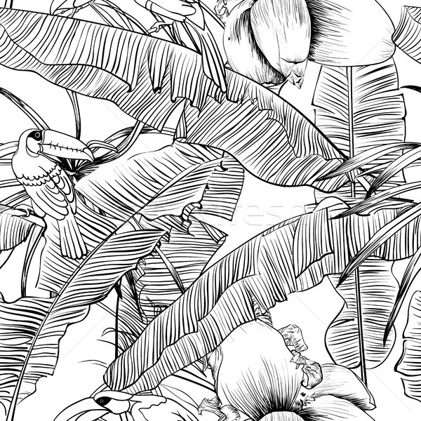 Seamless tropical pattern with banana palms coloring book Stock photo © Mamziolzi