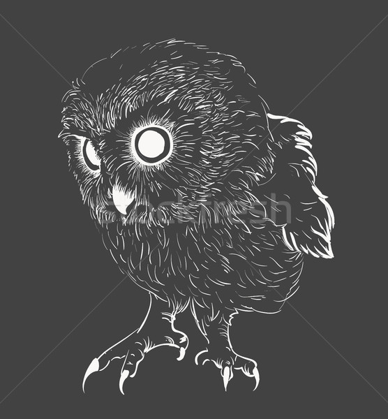 Owl hand drawn, black and white Stock photo © Mamziolzi