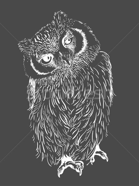 Foto stock: Búho · dibujado · a · mano · blanco · negro · aislado · resumen · diseno