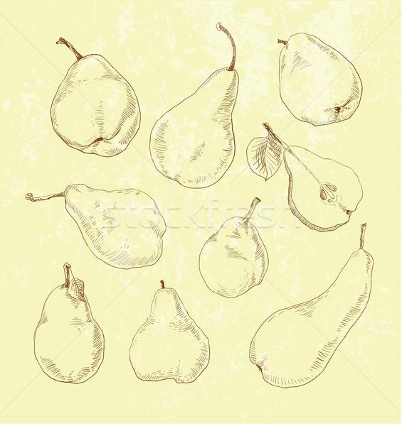 Pear fruit - vintage illustration set Stock photo © Mamziolzi