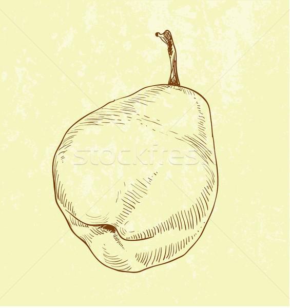 Pera frutta vintage illustrazione albero Foto d'archivio © Mamziolzi