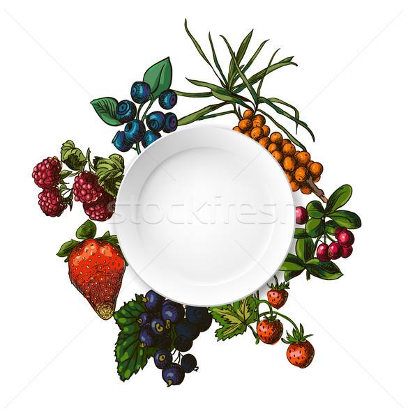 Illustration set of berries Stock photo © Mamziolzi