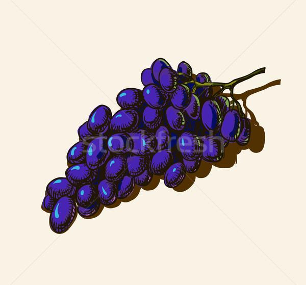 Stok fotoğraf: üzüm · yaprak · meyve · yeşil · bitki · yeme