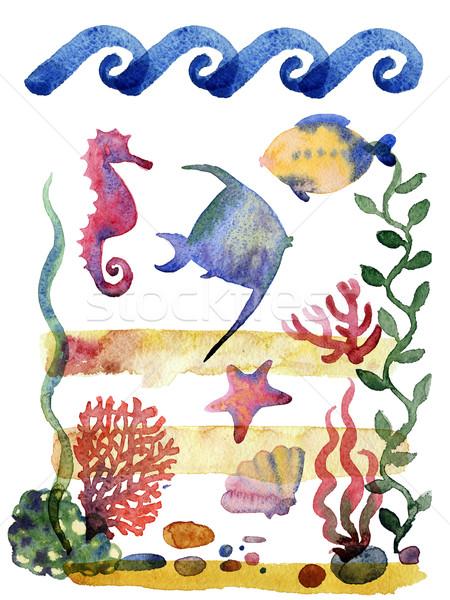 Ingesteld verschillend zee zeester aquarel illustratie Stockfoto © Mamziolzi