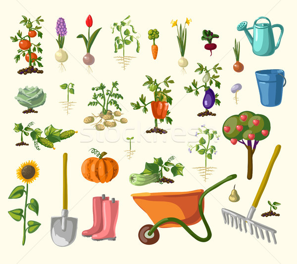vector gardening set Stock photo © Mamziolzi
