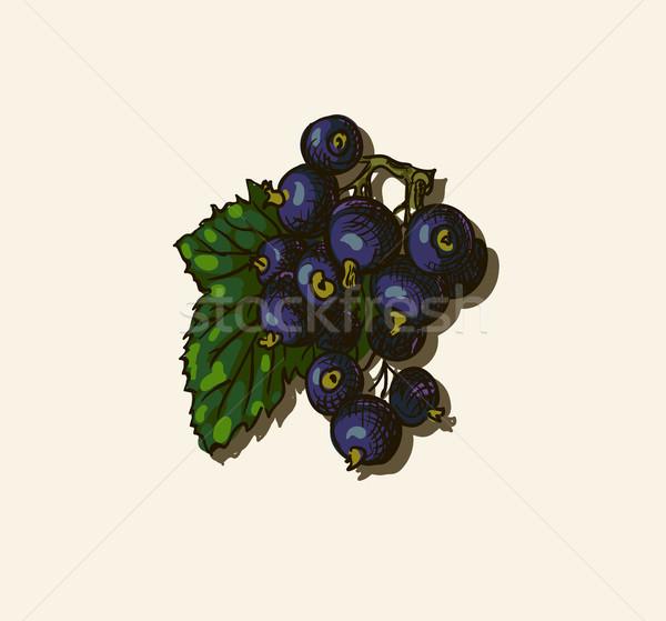 Disegno design foglia frutta giardino Foto d'archivio © Mamziolzi