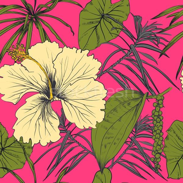 Tropicali esotiche fiori foglie immagine Foto d'archivio © Mamziolzi